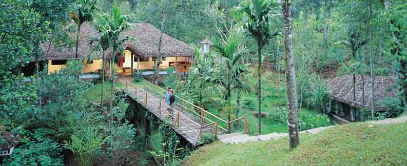 Cochin to Periyar Tours-Kerala Holiday Tours
