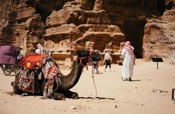 8 Days In Jordan