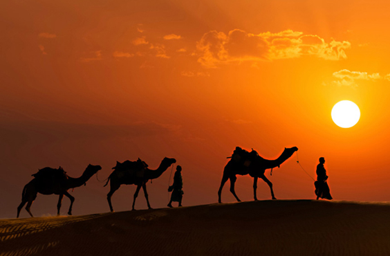 Best Forts and Palaces Holiday Tour Packages of Rajasthan