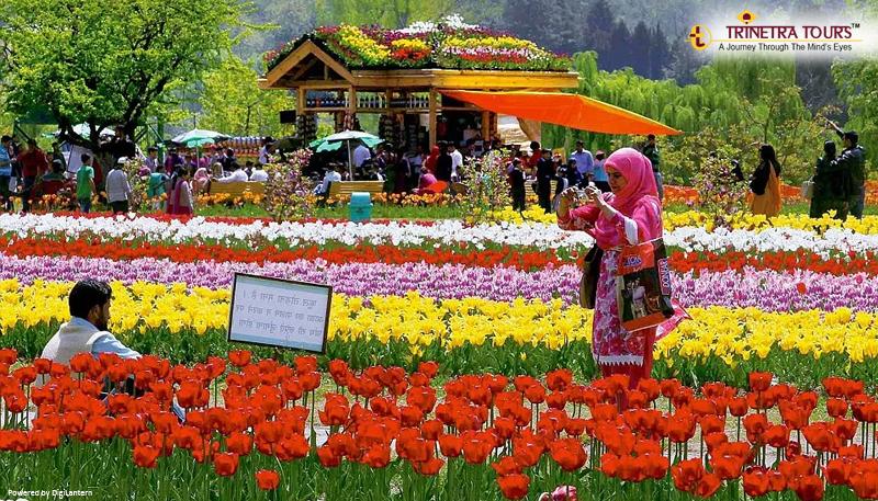 kashmir-mughal-garden