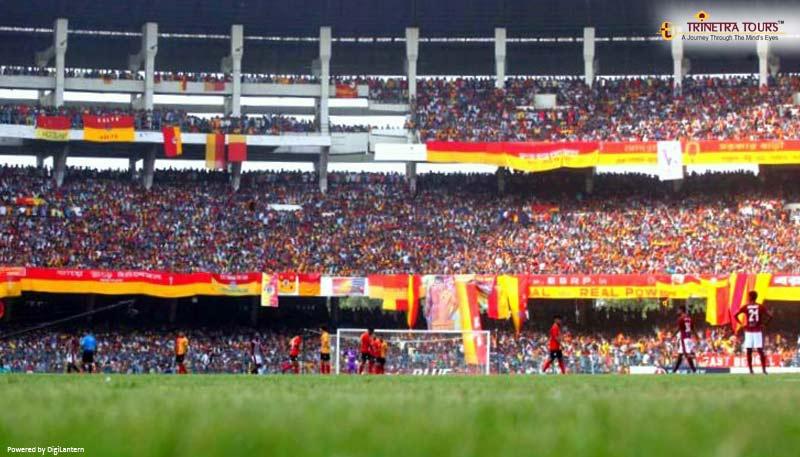 Bengal Stadium Tours